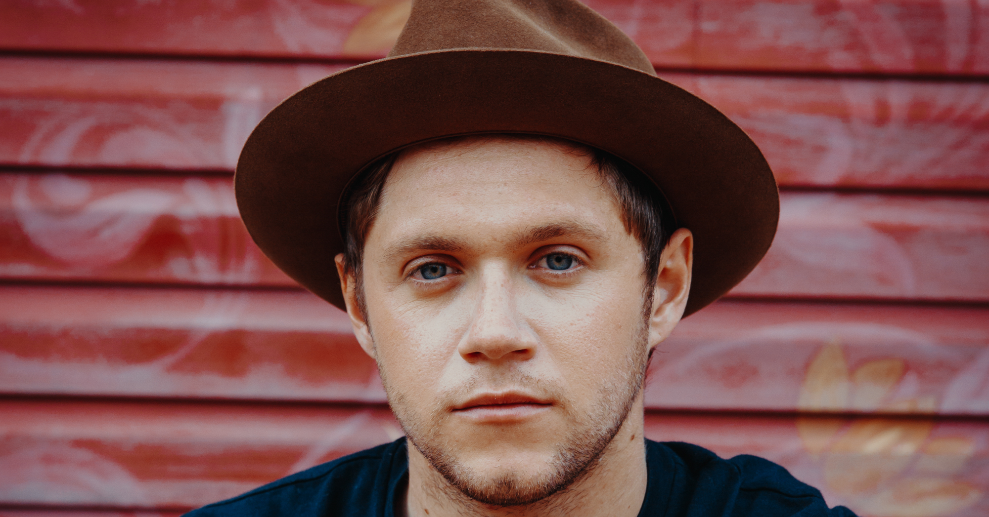 Review | Flicker by Niall Horan