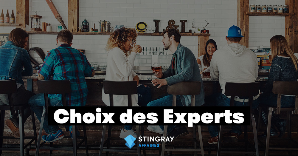 Choix des experts