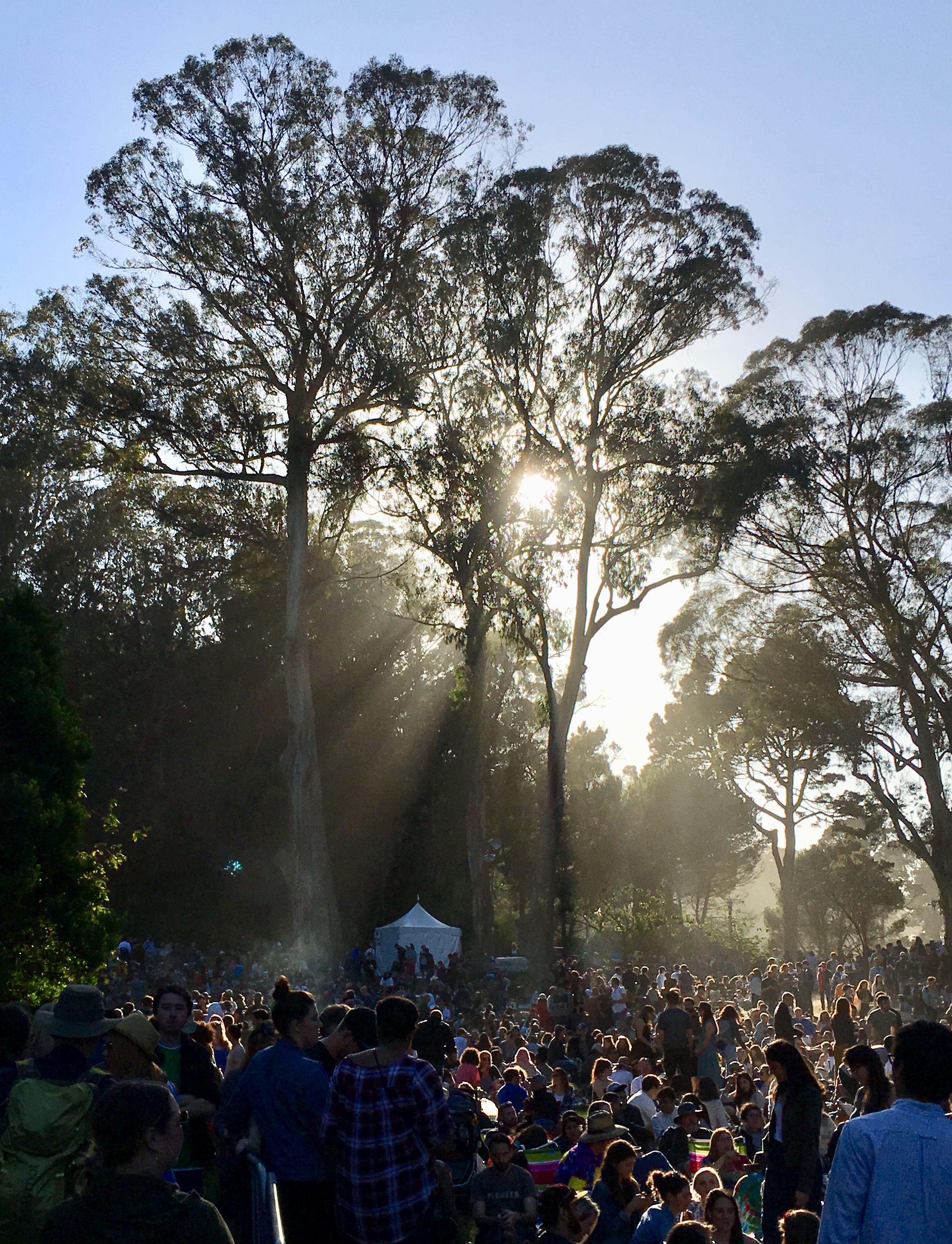 Crowd at Hardly Strictly Bluegrass festival