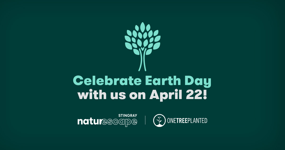 Naturescape Earth Day